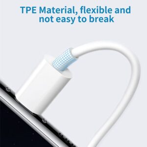 Double Adaptateur iPhone Auxiliaire resistant